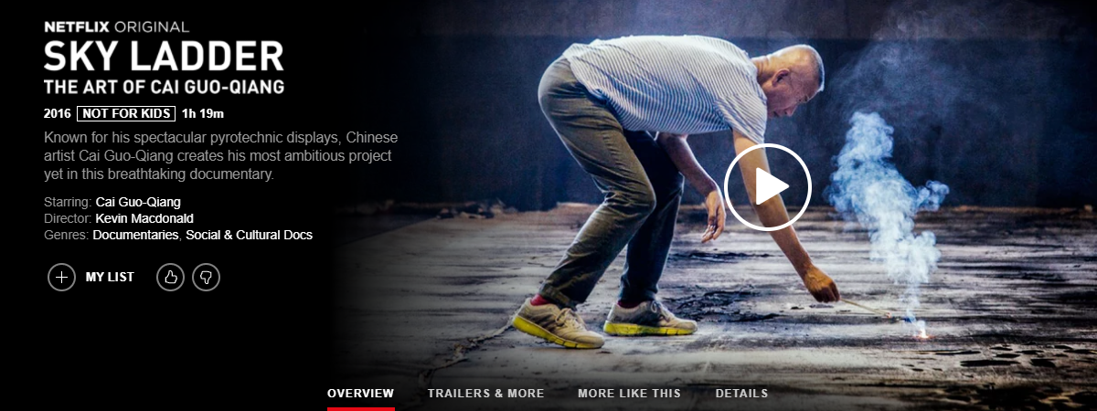 Top Must-Watch Netflix Shows & Movies for Photographers